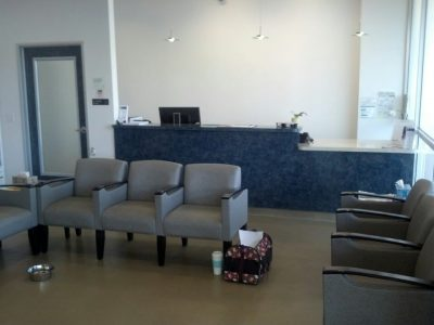 The waiting area and reception desk of the front area in the clinic